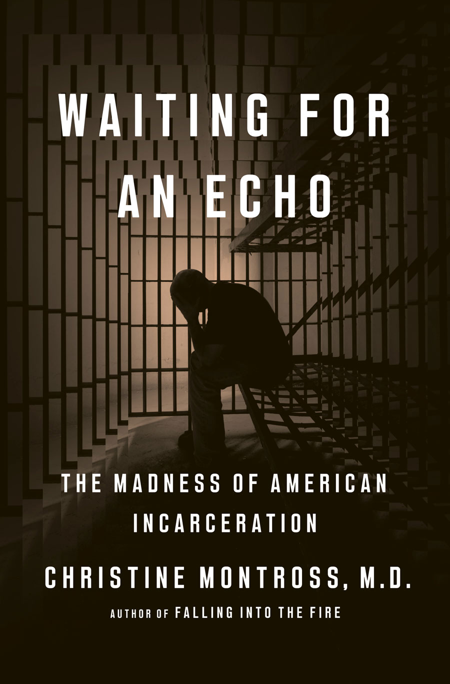 """""""Waiting for an Echo"""" book"""